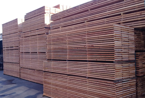 western red cedar selection fine gestapeld